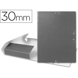 Carpeta proyectos liderpapel folio lomo 30mm carton gofrado