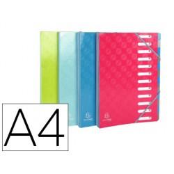 Carpeta exacompta harmonika clasificadora fuelle 12 departamentos con gomas carton compacto colores
