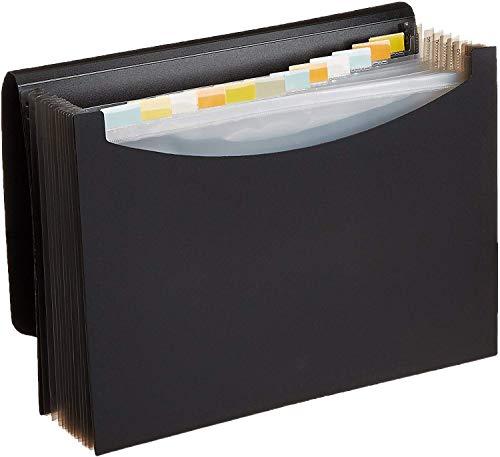Amazon Basics - Carpeta de acordeón (tamaño A4)